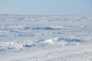 Frozen Bering Sea